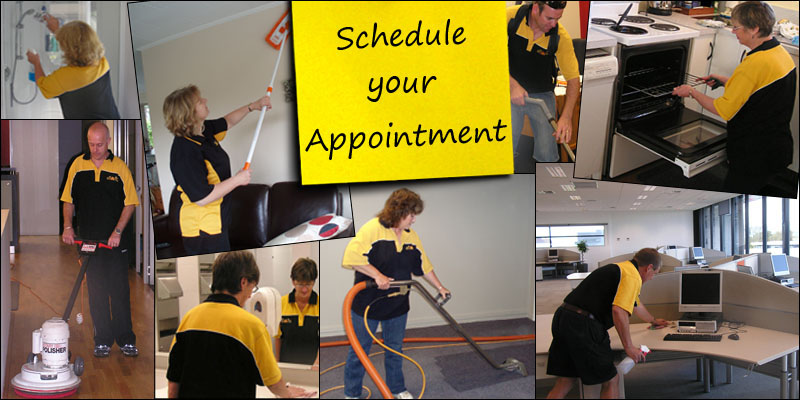 Busy Bees - Commercial Cleaners | Home Cleaning | Carpet Cleaners